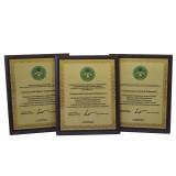 Деревянные дипломы (5)