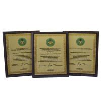 Деревянные дипломы