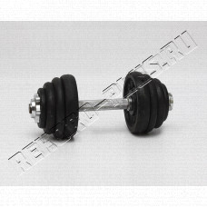 Купить Гантели 2 по 12,5 кг   YT-9008-25 в Симферополе