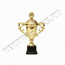Купить Кубок  С898-1   Цену смотрите внутри! в Симферополе